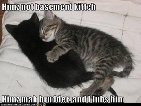Himz not basement kitteh  Himz mah brudder, and I lubs him