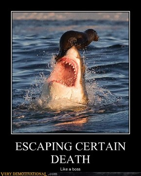ESCAPING CERTAIN DEATH