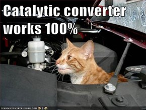 Catalytic converter works 100%