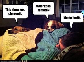 Itz stuk in da couch cushuns.
