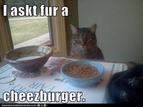 I askt fur a  cheezburger.