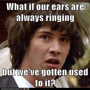 What if our ears are always ringing  but we've gotten used to it?