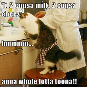 'k..2 cupsa milk, 2 cupsa cheez hmmmm... anna whole lotta toona!!