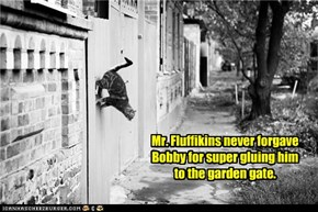 Mr. Fluffikins never forgave Bobby for super gluing him to the garden gate.