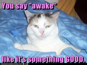 "You say ""awake""   like it's something GOOD."