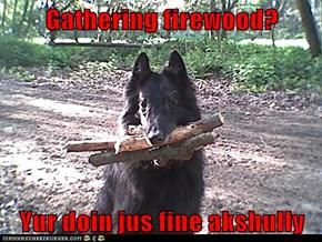 Gathering firewood?  Yur doin jus fine akshully