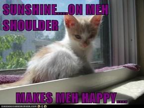 SUNSHINE....ON MEH SHOULDER MAKES MEH HAPPY....