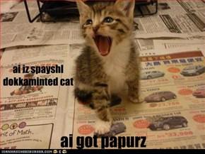 ai iz spayshl dokkaminted cat
