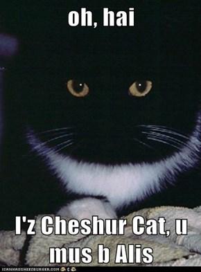 oh, hai  I'z Cheshur Cat, u mus b Alis