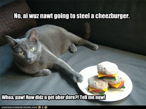No, ai wuz nawt going to steel a cheezburger.