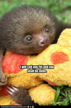 Animal Capshunz: And You Shall Be My Fifi