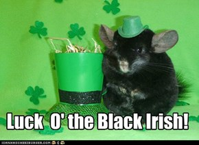 Luck  O' the Black Irish!