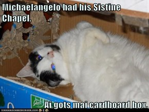 Michaelangelo had his Sistine Chapel.  Ai gots mai cardboard box.