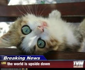 Breaking News - the world is upside down