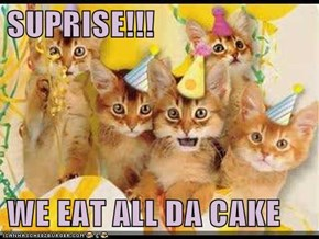 SUPRISE!!!  WE EAT ALL DA CAKE