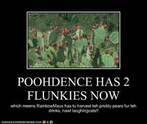 POOHDENCE HAS 2 FLUNKIES NOW