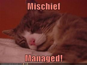 Mischief  Managed!