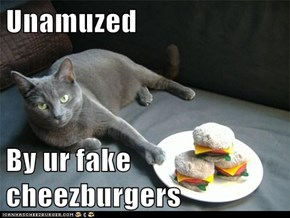 Unamuzed  By ur fake cheezburgers