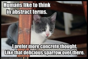 Humans like to think in abstract terms.