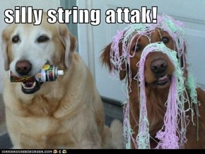 silly string attak!
