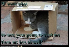 W www what  so now your going to evict me from my box as well?