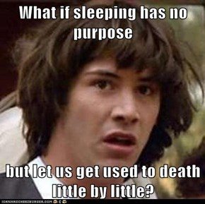 What if sleeping has no purpose  but let us get used to death little by little?
