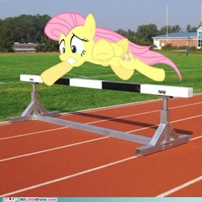 Fluttershy doing hurdles