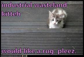 industrial wasteland kitteh  would like a rug. pleez.