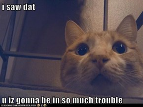 i saw dat  u iz gonna be in so much trouble