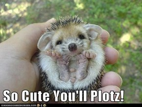 So Cute You'll Plotz!