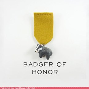 I Am Honored to Wear the Badger