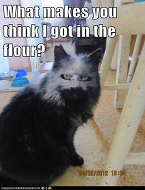 Lolcats: HMMM I DUNNO WHAT COULD IT BE?????