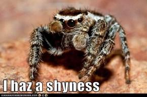 I haz a shyness