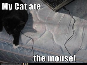 My Cat ate                    the mouse!