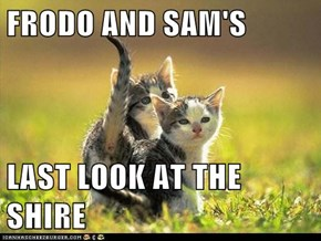 FRODO AND SAM'S  LAST LOOK AT THE SHIRE
