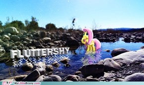 The Nature of Fluttershy