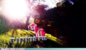 The Nature of Pinkie Pie