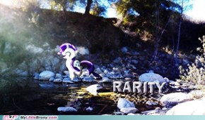 The Nature of Rarity
