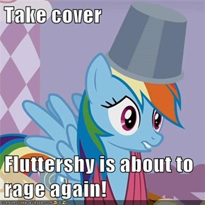 Take cover  Fluttershy is about to rage again!