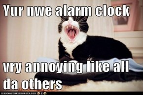 Yur nwe alarm clock  vry annoying like all da others