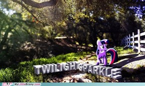 The Nature of Twilight Sparkle