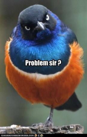Problem sir ?