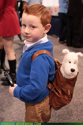 Tintin, the Early Years