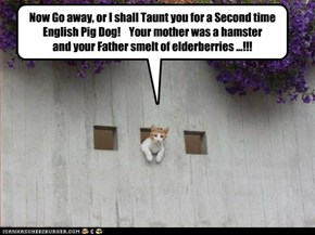 Lolcats: Now Go Away