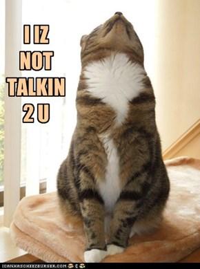 I IZ NOT TALKIN 2 U