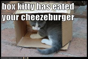 box kitty has eated your cheezeburger