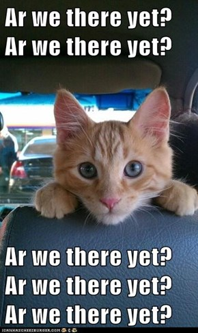 Lolcats: Ar We There Yet?