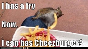 I has a fry Now, I can has Cheezburger?