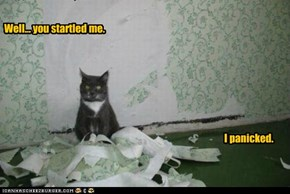 Lolcats: Why I Tore Up the Wallpaper?