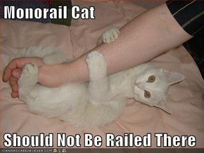 Monorail Cat  Should Not Be Railed There